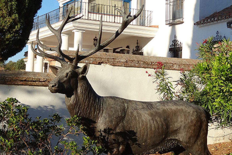 Trekking Across Spain