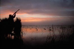 Duck hunter NHDs#065