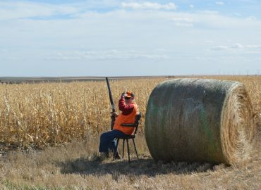 Premier South Dakota Pheasant Hunt