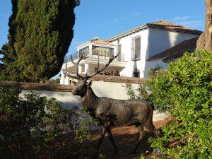 Pinos Altos Estancia Espana Lodge Europe