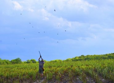 Trek Targeting The Infamous White-Winged Dove