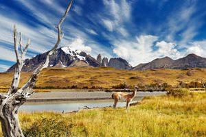 Torres_del_Paine_-__view